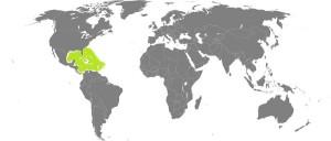 mapamundi2
