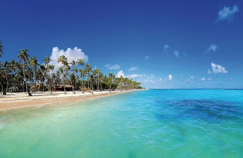 Punta Cana Ano Novo  pqn